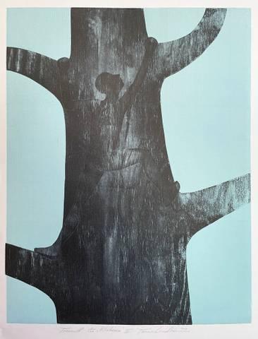 Bilde av Klatreren (turkis), varianter, av Trine Lindheim