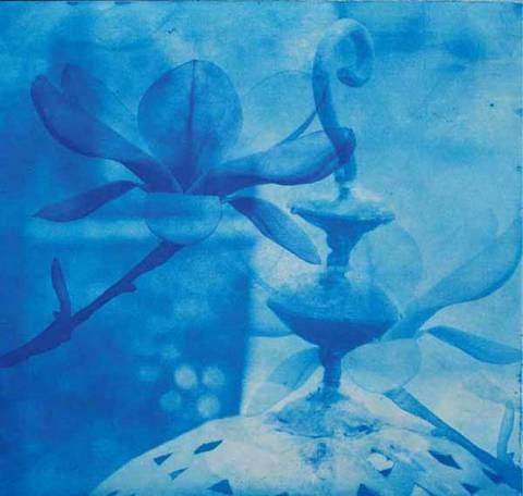 Bilde av Blå magnolia av Monica Egeli