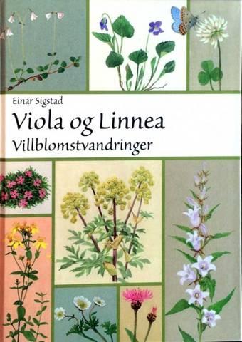 Bilde av Viola og Linnea, bok av Einar Sigstad